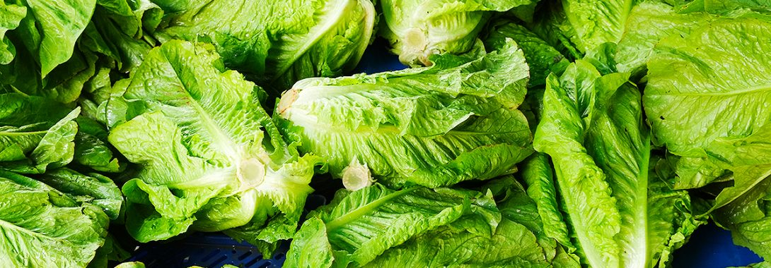 Lettuce Is Screwing Up The Trucking Industry