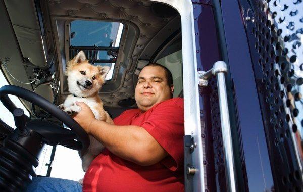 How Do Pets Help Truckers?